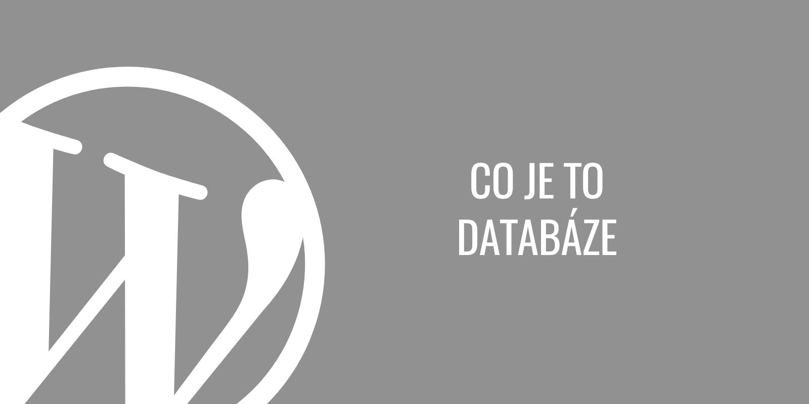 Co je to databáze